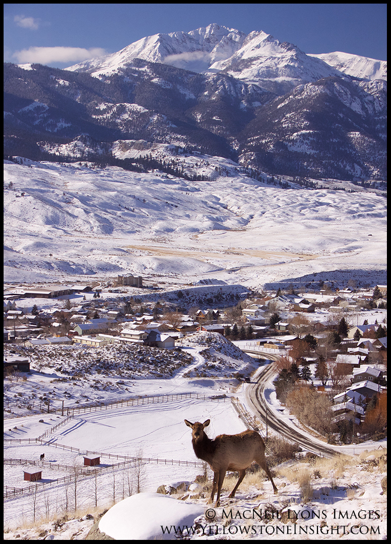 Gardiner, Montana - North Entrance to Yellowstone & home of Yellowstone Insight, early Winter 2016