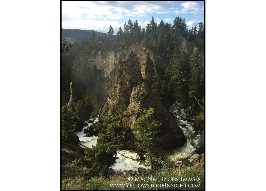 "Yellowstone's ""Rivendell"", Tower Creek, Yellowstone National Park, Spring 2016"