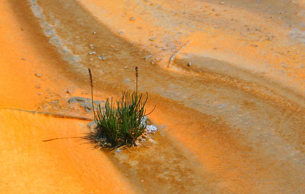 Yellowstone_geolog